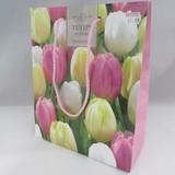 Small tuliptriump