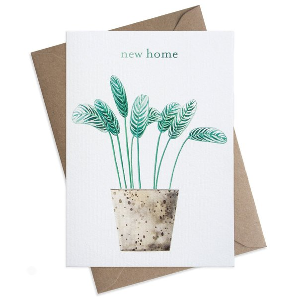Large new home pot plant greeting card