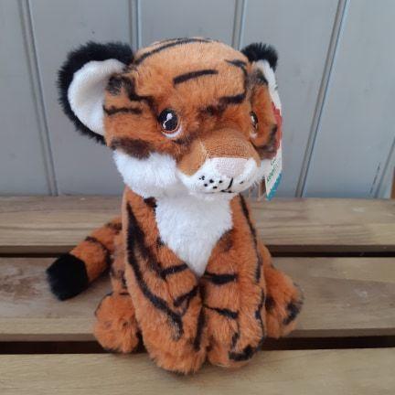 Large keel tiger