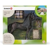 Small horse care set frisian