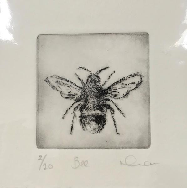 Large ngm bee print