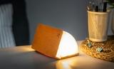 Small gingko mini linen smart book light15