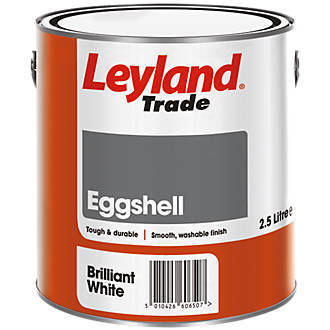 Large leyland eggshell