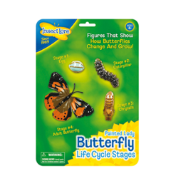 Medium_insect_lore_butterfly_butterflies_life_cycle_figures_painted_lady_sq