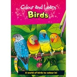 Small colour and learn birds colouring book