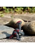 Small parasauolophus  1