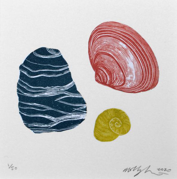 Large seashells mini molly lemon 3