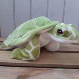 Small keel turtle