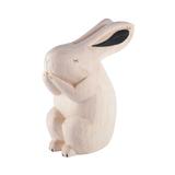 Small large 4f9sesdq4wjzk6sryu5v rabbit