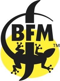 Large bfm logo