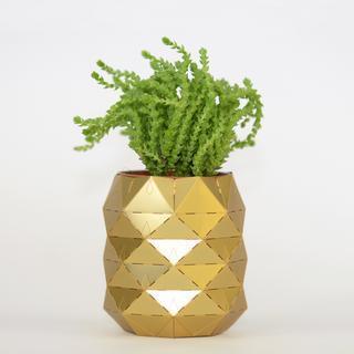 Large 2.pineapple succulent pot 1500