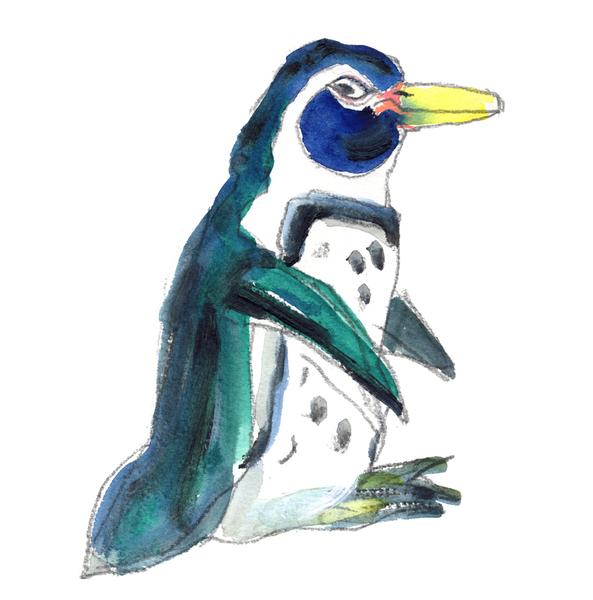 Large penguin web