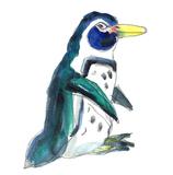 Small penguin web