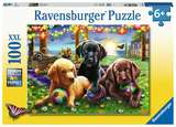 Small ravensburger fun junction toy shop perth crieff perthshire scotland jigsaw puzzle jig saw puppy picnic 100xxl