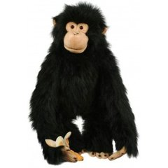 Medium_puppet_company_large_chimp