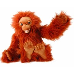 Medium_puppet_company_baby_orangutan