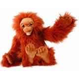 Small_puppet_company_baby_orangutan