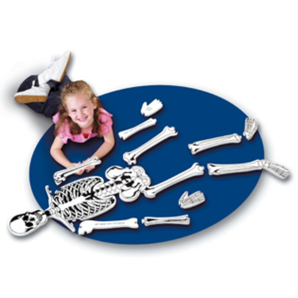 Large learning resources skeleton bones floor jigsaw puzzle soft foam 15 pieces early years science preschool