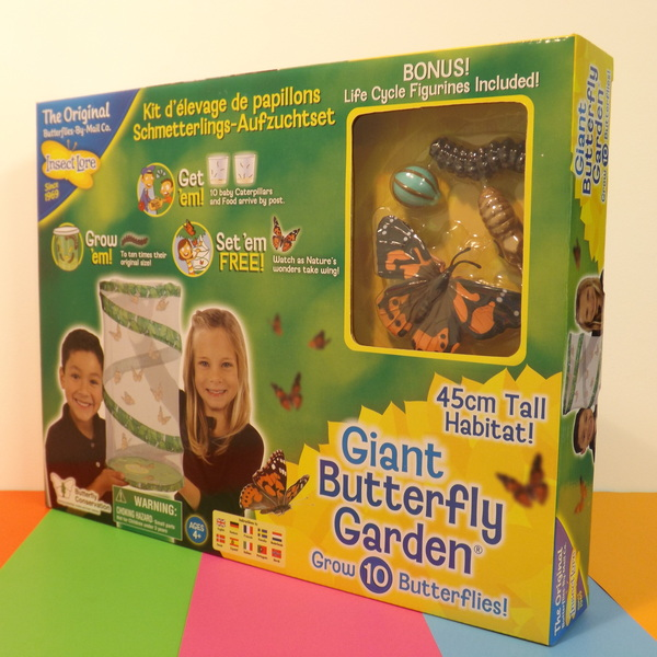 Large itl giant live butterfly garden