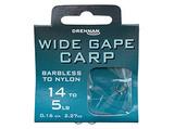 Small wide gape carp htn th updated