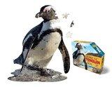 Small iam penguin