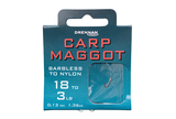 Small carp maggot htn packed updated