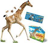 Small iam giraffe