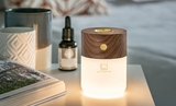 Small gingko smart diffuser lamp18