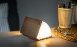 Small gingko mini linen smart book light07