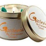 Small gardenia