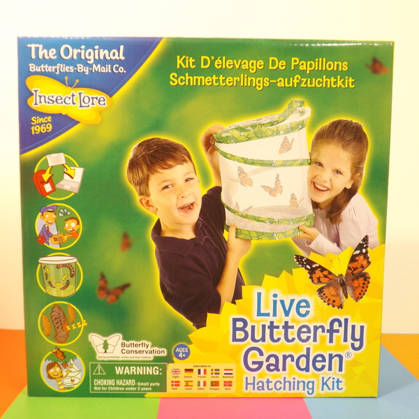 Large itl live butterfly garden