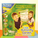 Small itl live butterfly garden