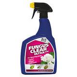 Small fungusspray